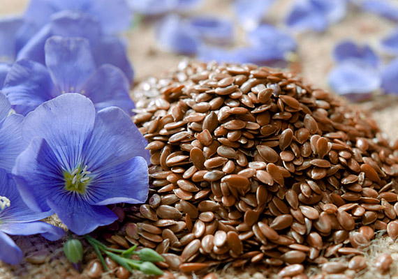 LenmagEz a barna kis magvacska az egyik legjobb zsírégető, anyagcsere-javító élelmiszer, amit fogyaszthatsz. Legegyszerűbben pedig nyersen a reggelidbe keverve tudod a szervezetedbe vinni a vitaminnal, esszenciális zsírsavakkal teli magokat.