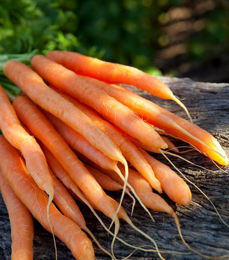 Sárgarépa  Az édeskés zöldséget akkor is bevetheted, ha a tisztítókúra ideje alatt rád tör a desszert iránti olthatatlan vágy. Nem csupán magas rosttartalma, de értékes vitaminjai miatt is érdemes fogyasztanod, melyek széppé varázsolják a bőrödet, és segítenek megóvni szemed épségét.  Kapcsolódó cikk: Étvágycsökkentő, zsírégető, béltisztító - Mi az? »