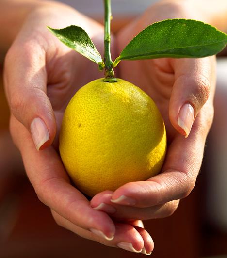 CitromA citromos víznél kevés hatékonyabb és egyszerűbb emésztésjavító, salaktalanító szer létezik. Amellett, hogy fokozza a bélrendszer aktivitását, fertőtlenítő hatása révén a káros mikroorganizmusoktól is megóv.Kapcsolódó cikk:Salaktalanító, zsírégerő citrusdiéta »
