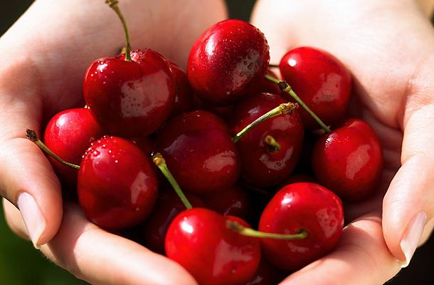 fanyar cseresznye a fogyáshoz