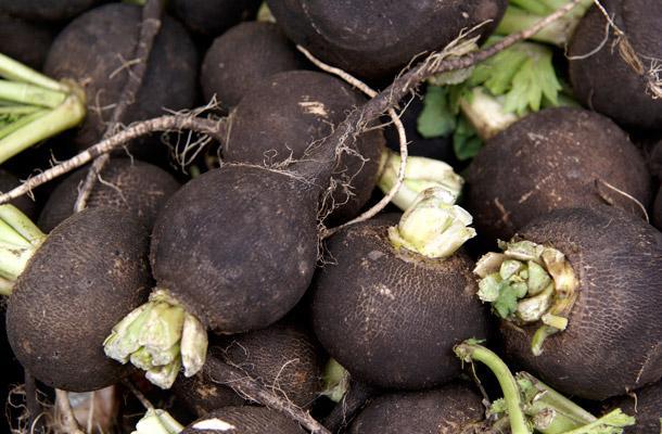 fekete retek fogyókúra