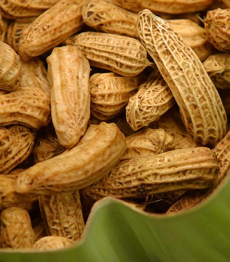 MogyorófélékKét étkezés között is hatékonyan csökkentheted étvágyad, ha sózatlan mogyorót fogyasztasz, mely gyorsítja az anyagcserédet, emellett sok fehérjét és fontos zsírokat tartalmaz.
