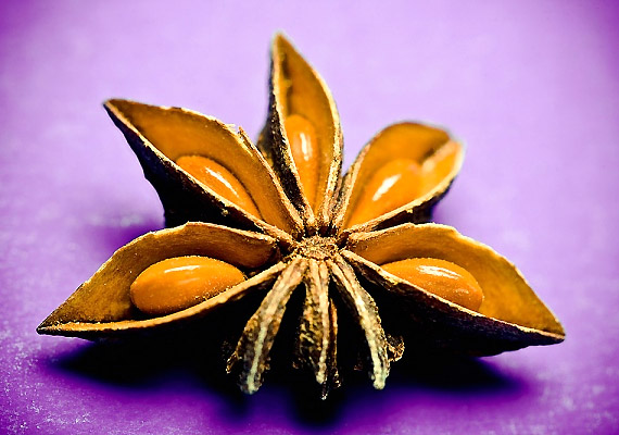 Az ánizs serkenti az emésztést, csökkenti a bélbántalmakat és megszünteti a puffadást. Fogyaszthatod tea formájában, vagy ízesíthetsz vele vadételeket, gyümölcskompótot.