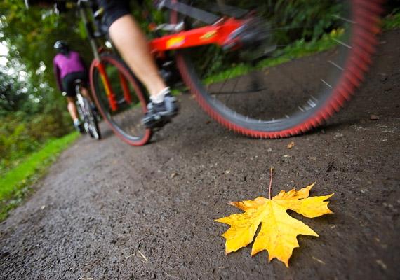 A kerékpározás - legyen az szobai vagy hagyományos - formálja a lábakat és a popsit. Közepes tempóban 15 perc alatt egy 60 kilogrammos nő nagyjából 120 kalóriát éget el biciklizéssel.