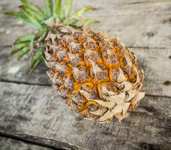 A fogyókúrában hatékony segítőtárs az ananász is, mivel igen magas rosttartalommal rendelkezik, amely felgyorsítja az anyagcserét. Emellett ez a csodás gyümölcs vízhajtó hatású, így segít, hogy laposabb legyen a hasad. Enzimtartalma pedig szerepet játszik tested sav-bázis egyensúlyának helyreállításában. Fontos, hogy ne konzerv formában fogyaszd, az ugyanis feldolgozott, cukrozott.