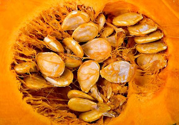A sütőtök kedvelt novemberi csemege, melyet fogyaszthatsz egyszerűen sütve, de készíthetsz krémlevest is belőle. A növény magas rosttartalmával mintegy átmossa a bélrendszert, emellett 100 gramm sütőtök 210 milligramm káliumot is tartalmaz, így megszabadít a has tájékán felgyűlt felesleges víztől. Próbáld ki a sütőtökdiétát!