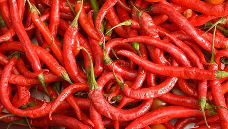 Zsírégetés chili paprikával   Femcafe
