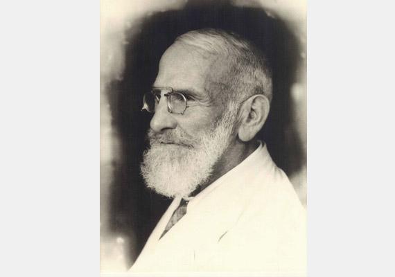Maximilian Oskar Bircher-Benner (1867-1939) svájci orvos a 20. század elején felfedezte, hogy az elhízás és a hozzá kapcsolódó betegségek okozója az élő információkat nem tartalmazó táplálék. Tudj meg többet a Bircher-Benner-diétáról!
