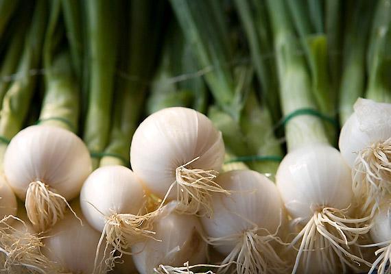 A már március végén fogyasztható újhagyma egyik komoly diétás előnye, hogy a benne lévő szulfidok jótékonyan hatnak a vérzsír és koleszterin értékére.