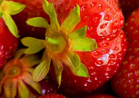 A földieper, illetve hivatalos nevén szamóca nem tartalmaz túl sok kalóriát - 100 grammban mindössze 40 kalória található -, gyümölcssavai és rostjai pedig segítik az emésztést.