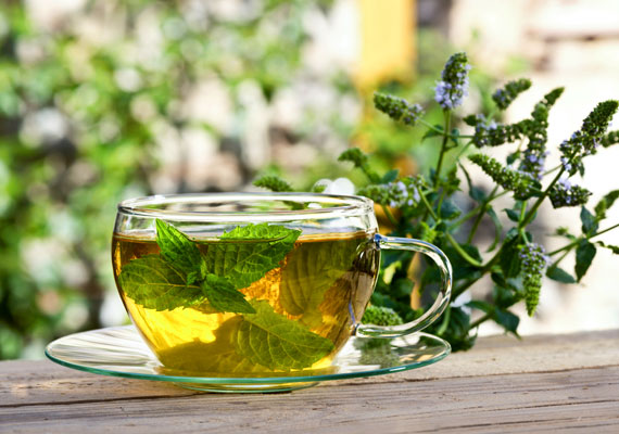 A borsmenta nemcsak az emésztési folyamatokat segíti: a belőle felszabaduló illóolajok hatással vannak a hipotalamuszra, és éhségérzetet csökkentő hatású hormonok termelését indítják be. Tudj meg többet a növény emésztésre gyakorolt jótékony hatásáról