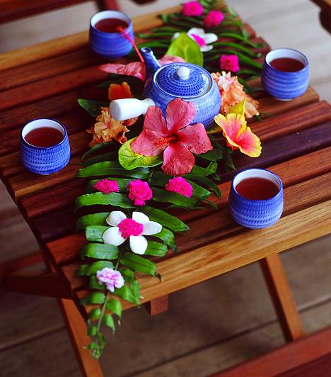 Rooibos teaAz afrikai vörös fokföldi rekettye hajtásaiból származó tealevelek lassítják tested öregedési folyamatait, megőrzik vitalitásodat és energiádat. A rooibos tea fogyasztásával felpörgetheted anyagcserédet is. Egy teáskanálnyi rooibos teát két deci forrásban lévő vízzel önts le, majd hagyd állni öt percig.Kapcsolódó cikk:Az 5 leghatékonyabb zsírégető tea »