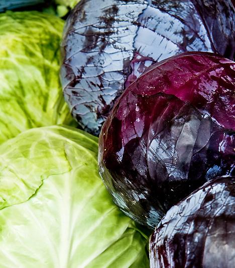 KáposztaA káposzta magas rosttartalma miatt az egyik leghatékonyabb emésztésserkentő étel, de káliumban is gazdag, így vízhajtó hatására is számíthatsz. Ha teheted, lila káposztát fogyassz, méghozzá nyersen, saláta formájában.Kapcsolódó cikk:Az új káposztaleves-diéta »