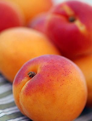 őszibarack-sárgabarack gyógynövény fogyókúrás tea mit esznek az ökölvívók a fogyás érdekében