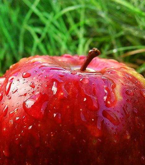 AlmaA ballasztanyagokban bővelkedő, anyagcserét fokozó, méregtelenítő alma karcsúsító hatása mellett fontos C-vitamin-forrást jelent, melynek pótlása a diéta során különösen ajánlott.Kapcsolódó cikk:Béltisztító, salaktalanító almakúra »