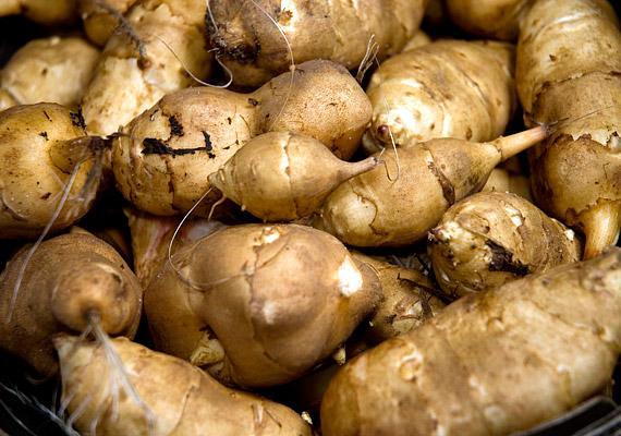 A csicsóka - más néven édeskrumpli - fő hatóanyaga az inulin nevű növényi rostanyag, mely segít megszüntetni az emésztőrendszerben kialakult esetleges kisebb gyulladásokat, megkönnyítve ezáltal az anyagcserét és a fogyást is.