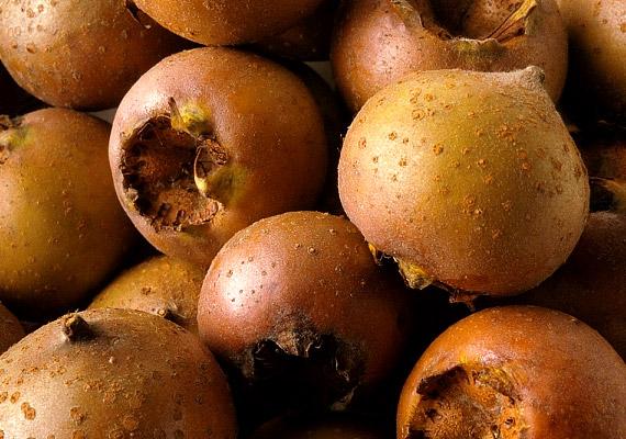 A naspolya kedvelt őszi csemege, mely magas rosttartalmából adódóan kiváló salaktalanító táplálék. Ráadásul a zsírégetéshez elengedhetetlen vitaminokban és ásványi anyagokban is bővelkedik.