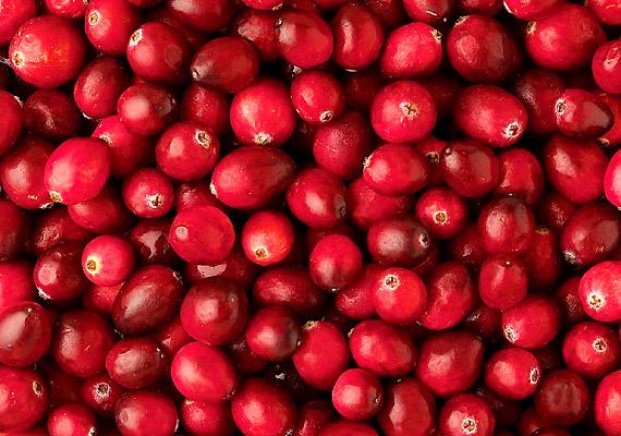 A tőzegáfonya fogyasztása nem csupán akkor ajánlott, ha húgyúti fertőzéstől szenvedsz. A vitaminokban gazdag növény erősíti az immunrendszert, és - magas rosttartalmának köszönhetően - a fogyásban is segít.