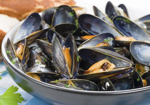 Éti kagyló                         Nagyobb áruházak hűtőpolcain fogod megtalálni ezt a kagylót, amit lisztbe forgatva, megpirítva adhatsz hozzá az olaszosan elkészített tésztákhoz, salátákhoz.