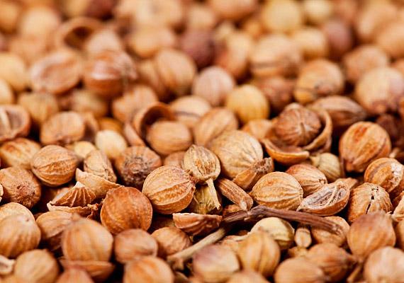 Emésztési zavarokra hasznos a koriander frissen préselt terméséből készült tea. Az optimális hatás elérése érdekében ajánlatos a koriandert kömény- és édesköményterméssel kombinálni, melyek erősebben oldják a görcsöket. Tudj meg többet a korianderről!