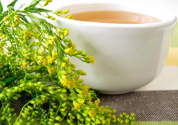 Az aranyvessző az előbbiekhez képest talán kevésbé ismert gyógynövény, ám a benne lévő flavonoidoknak, cserzőanyagnak, szaponinoknak és nyálkaanyagoknak köszönhetően erős vízhajtó, méregtelenítő, májtisztító hatással bír. Gyulladáscsökkentő tulajdonsága miatt vastagbélgyulladásra is ajánlják teájának fogyasztását. Egy csapott evőkanál szárított aranyvesszőt forrázz le fél liter vízzel, hagyd állni 15 percig, majd szűrd le. A fél liter teát két vagy három csészére osztva fogyaszd el a nap során.