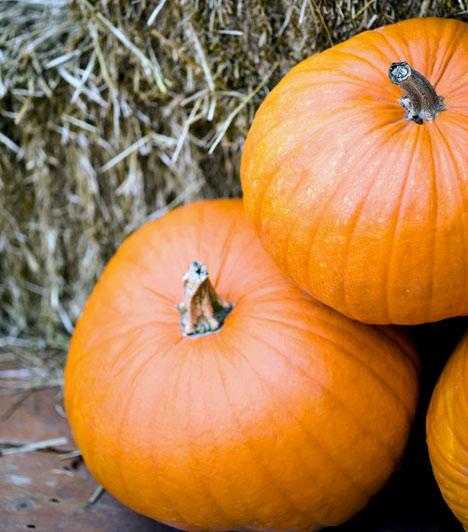 SütőtökAz egyik legédesebb zöldség könnyen emészthető, és finoman tisztítja a bélcsatornákat. A népi gyógyászat is hashajtó, béltisztító tulajdonsága miatt ajánlja, de B- és C-vitamintartalma is jelentős, így támogatja a szervezet természetes zsírégető folyamatait. Segíti a máj és a vese működését, így a méregtelenítésben is közreműködik.Kapcsolódó cikk:Egy hét alatt 3 kiló mínusz a béltisztító sütőtökdiétával »