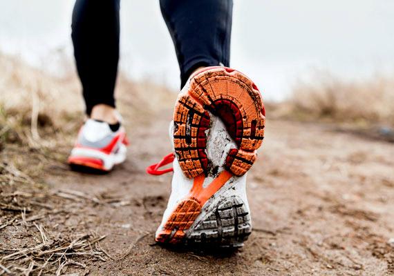 Rendszeres, tempós sétával jobban kordában tartható a testsúly, mint konditermi edzéssel - állítja a London School of Economics tanulmánya. Azoknak a kutatásban részt vevő embereknek, akik legalább 30 percet szántak a tempós sétára, kisebb volta BMI-jük, mint akik ritkábban ugyan, de konditeremben edzettek.