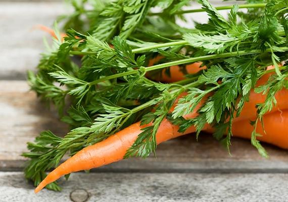 A friss sárgarépában rengeteg C-, A-, D-, B- és K-vitamin található, ráadásul növényi rostokban is bővelkedik, ezzel támogatva az anyagcseréd működését.