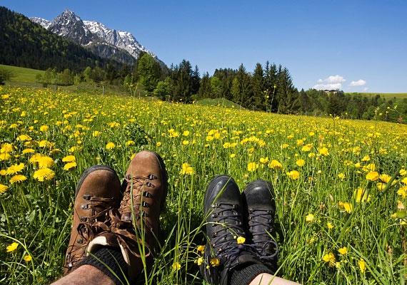 Nincs is kellemesebb hétvégi program a tavaszi hónapokban, mint egy kirándulás a közeli hegyekben, erdőkben. Amellett, hogy a túrázás szinte minden izmodat átmozgatja, a tüdőd is megtelik friss levegővel, és félóránként több mint 200 kalóriát égethetsz el egy tempós menetben.