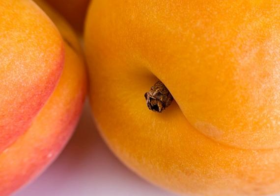 A sárgabarack gazdag B5-vitamin- és rostforrás, így serkenti a bélműködést és a zsírsejtek lebontását.