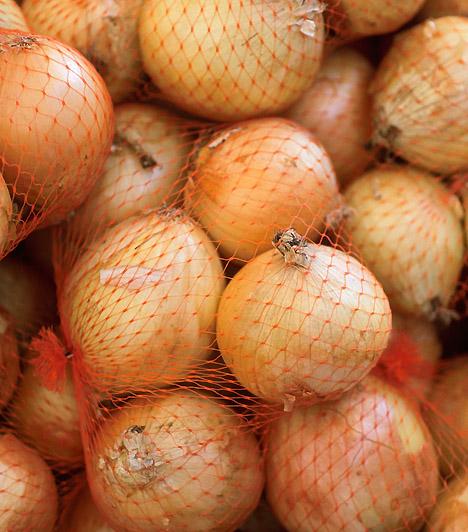 VöröshagymaA vöröshagyma fogyasztása serkenti emésztésed, emellett segítségével a kellemetlen puffadást is megszüntetheted. Serkenti veseműködésedet, így a vizesedéstől is megszabadulhatsz.