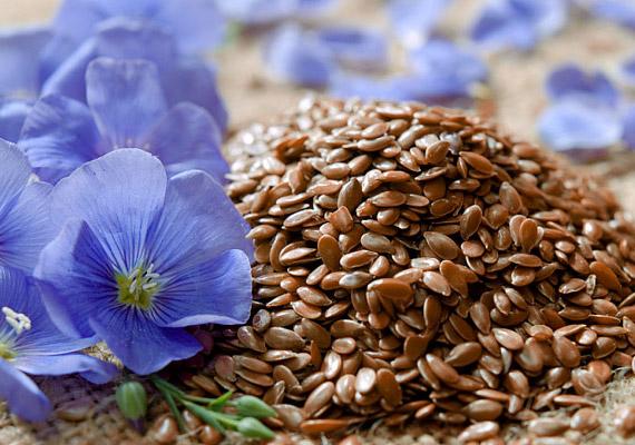 LenmagA lenmag és hidegen sajtolt lenmagolaj szintén a telítetlenzsírsav-tartalmú ételek közé tartozik, ráadásul omega-3-tartalma - ez a zsírsav segíti a szervezetbe jutó és lerakódó zsírok szállítását - hatszorosa az átlagos halolajnak.