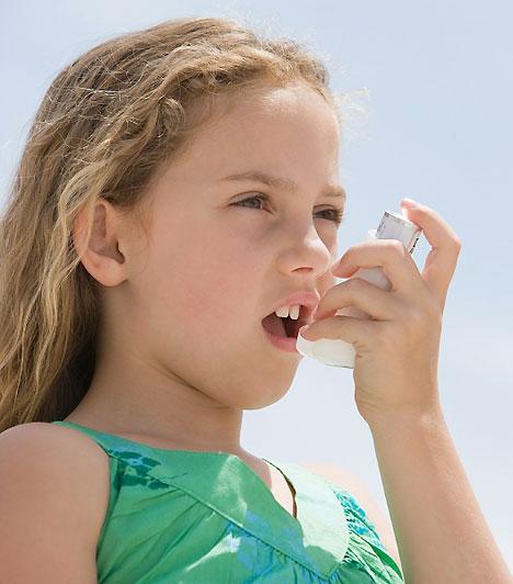 AsztmaA légzőrendszer krónikus megbetegedése, mely a fejlett országokban élő gyerekek 5-10%-át érinti. Fő tünete a fulladás: a kicsi zilál, levegő után kapkod. Gyógyszerrel általában jól karbantartható, ám megelőzésképpen célszerű kiiktatni minden olyan tényezőt, amit a rohamok előidézőjeként azonosítottak.