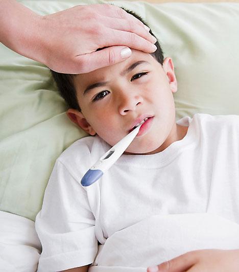 Influenza                         Érintkezés utján vagy cseppfertőzéssel terjed, leggyakrabban a H1N3, illetve manapság a H1N1 vírus okozza. A betegség ágynyugalom, folyadékpótlás és lázcsillapítás mellett általában gyorsan lezajlik. Egyes esetekben az orvos vírus elleni szérumot, illetve – a szövődményeket megelőzendő – antibiotikumot adhat.