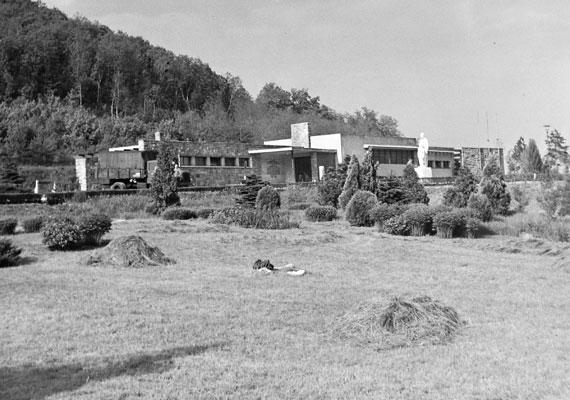 Az Úttörővasút Szépjuhászné állomása - igaz, akkoriban Ságvári ligetnek hívták.