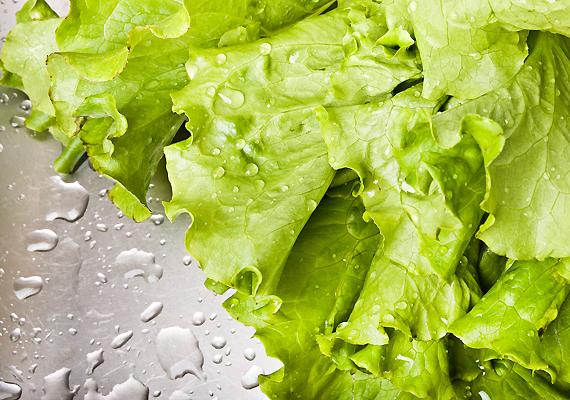 Szintén agypörgető tulajdonsággal bír a fejes saláta, amely ráadásul a lélekre is pozitív hatással van: oldja a szorongást és segíti a nyugodt, pihentető alvást.