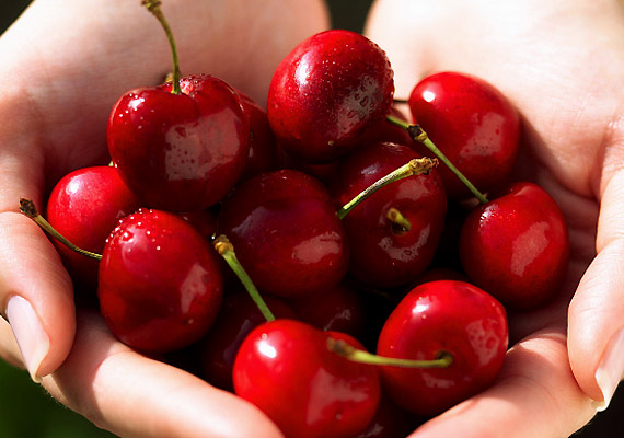 A cseresznye bővelkedik antioxidánsokban, melyek révén növelhető az agy memóriáért felelős sejtjeinek száma. Édes ízének köszönhetően a napi nassot is kiválthatod vele.