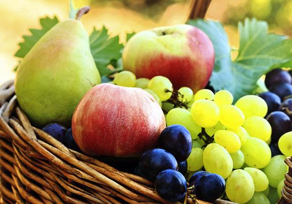 Az ősz korántsem jelenti a gyümölcsérés időszakának végét, sőt, ilyenkor is a bőség zavarába kerülhetünk a piaci sorokat járva a körte, az alma, a szőlő, vagy a szilva láttán. Nagyon vigyázni kell azonban, hogy a gyereknek adott gyümölcs alaposan meg legyen mosva, ugyanis a hanyagul, vagy nem megmosott gyümölcs a rajta lévő szennyeződések - madárürülék, por, baktériumok, rovarpeték - gyomorpanaszokat, hasmenést, hányást okozhatnak.