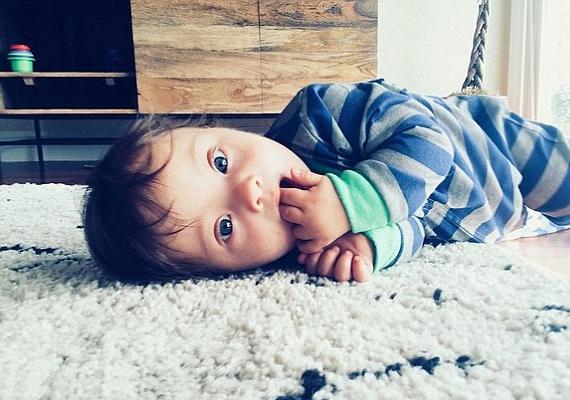 Bár Micah még nagyon kicsi, hála a fotóknak, amelyeket Amanda tett fel róla az Instagramra, ma már hétezer követője van a neten.