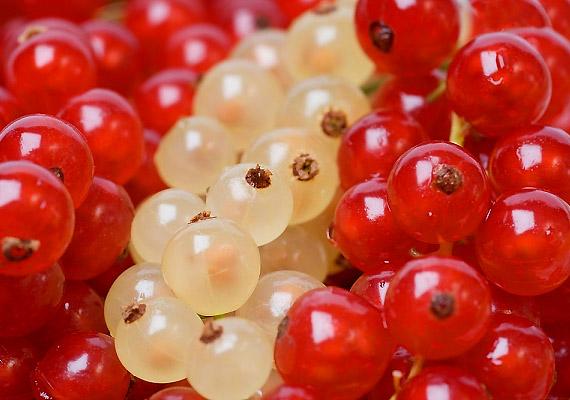 A bogyós gyümölcsök így például a ribizli - ugyancsak bővelkednek antioxidánsokban, melyek révén növelhető az agy memóriáért felelős sejtjeinek száma. Minél élénkebb a színük, annál több antioxidáns található bennük.