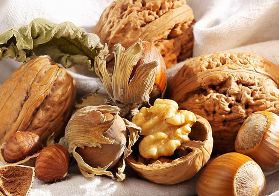Ha nassolnivalóra vágyik a csemetéd, adj neki olajos magvakat, diót vagy a mogyorót. Ezek fogyasztásával többek között E-vitamint, omega-3 zsírsavakat és értékes olajokat visz be a szervezetébe.