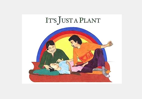 Mit tegyen a kisgyermek, ha éjjel, egy óvatlan pillanatban füvezésen kapja a szüleit? Ráadásul kérdésére a következő választ kapja: - De hát ez csak egy növény.