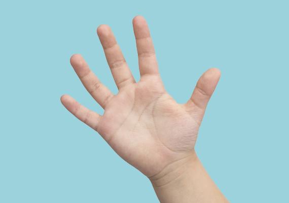 Amennyiben a hüvelykujja hosszabb, mint az átlag, akkor ügyes kezű emberke válhat belőle, aki jól boldogul az aprólékos munkákkal, mint a porcelánfestészet vagy a sebészet.