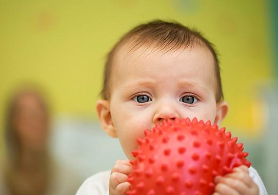 A vörös szín fejlett ösztönvilágra utal. Gyermeked két lábbal áll majd a földön, mindemellett azonban a szenvedélyesség is meghatározó vonása. Teljes erőbedobással küzd szerettei és persze önmaga boldogulásáért, ám anélkül, hogy másokon keresztülmenne. Erőfeszítéseinek meg is lesz a gyümölcse.