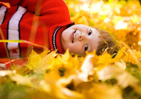 A sárga színt kedvelők az élet valamennyi területén kezdeményezők és aktívak, és minden körülmények igyekeznek magukhoz venni és megtartani az irányítást. Emellett azonban nagyon is mélyen éreznek, a lojalitás pedig egyik meghatározó jellemvonásuk.