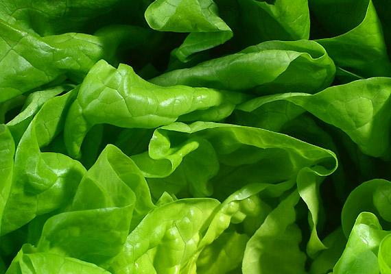 Fejes salátaTavasszal a fejes saláta is egyike lehet a vitaminbeviteli forrásoknak. C-, B-vitamin és béta-karotin-, vagyis A-elővitamin-tartalma, folsav- és vastartalma is mellette szól, plusz méregtelenítő és salaktalanító is. Cézár-salátaként elkészítve a gyerekek kedvence lehet.