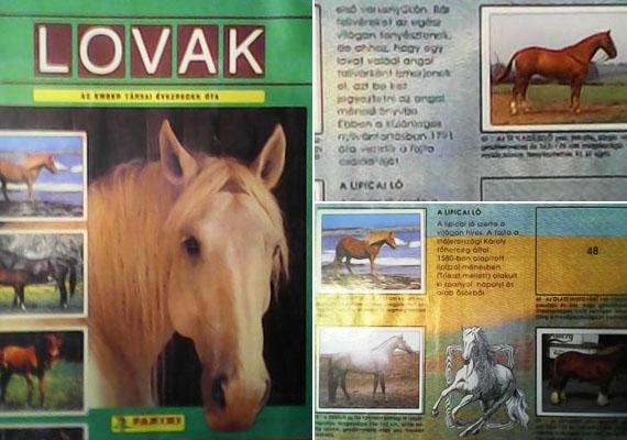 Ilyen album lovasban és WWF állatosban is volt.