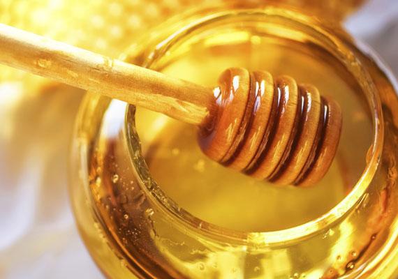 MézA méz nagyon egészséges a kisgyerekek és a felnőttek számára, azonban egy pici babának még problémát jelent a megemésztése. Továbbá olyan kórokozók csíráit tartalmazhatja, amivel egy egy- vagy kétéves gyerek szervezete már boldogul, de egy féléves babáé még nem.