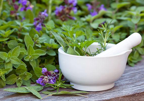 A gyógynövényekből készült teák is hatékonyak, különösen a zsálya, a zsurló és az izzasztó hatású fekete bodza javasolt.