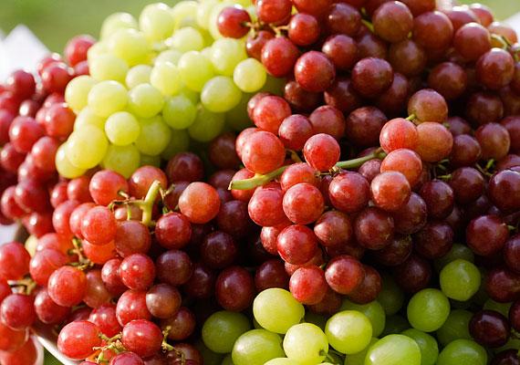 Itt a szőlőszezon - a tipikus őszi gyümölcs valamennyi fajtája bővelkedik antioxidánsban, melyek révén növelhető az agy memóriáért felelős sejtjeinek száma.